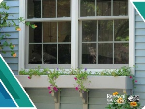 Is Your Window Box Damaging Your Home?